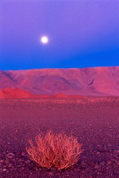 "Cerro Macon - Província de Salta  Argentina (""the sun had just set on the other side as the moon was rising"")"