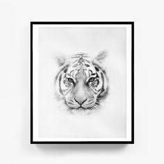 Sketch Print, Tiger Print, Nursery Animal Wall Art, Safari Decor, Scandinavian , Printable, Digital Download, Black and White, Tiger Poster by ZJStudio on Etsy https://www.etsy.com/listing/481404331/sketch-print-tiger-print-nursery-animal