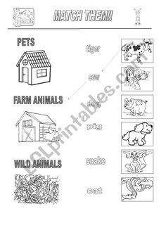 Wild animals and domestic animals Worksheets,EVS