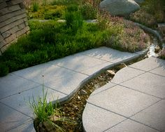 interesting way to incorporate a stream that is small and not contrived; can I route rainwater to the garden like this?