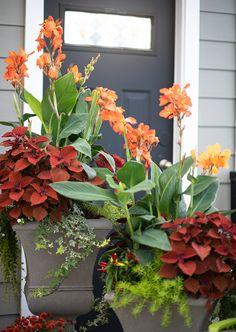 Quickly Create Fall Container Gardens | Garden Tips | West Coast Gardens-  fall container gardens for your home - by west coast gardens / #garden #gardens #fallgarden #autumn #containergardens