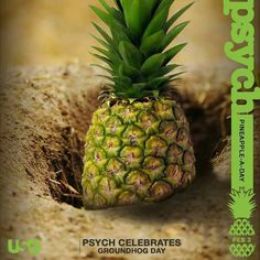 Haha! This is funny! #psych