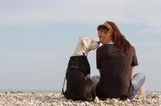 Beijar o seu cachorro faz mal? Descubra a resposta no nosso site ;) #animais #cachorro