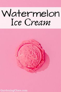 How about some watermelon ice cream on a hot summer day? You can choose between a healthy serving or a sugary treat! Watermelon Ice Cream, Watermelon Recipes, Sweet Tooth, Gardening, Treats, Canning, Healthy, Day, Summer
