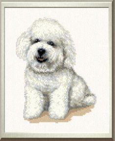 Brutus Bischon Frise - cross stitch pattern designed by Marv Schier. Cross Stitching, Cross Stitch Embroidery, Cross Stitch Patterns, Gifts For Dog Owners, Dog Gifts, Poodle, Cross Stitch Animals, Dog Art, Bichons