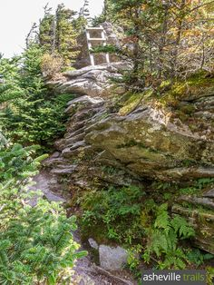 Hike the Profile Trail to Grandfather Mountain, climbing rustic wooden ladders to exceptional summit views near Boone, NC