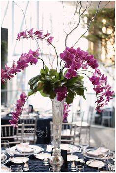 orchids. love them. one of the main flowers in our aqua, purple, grey wedding color scheme :)
