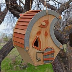 Have fun building a birdhouse with personality plus.