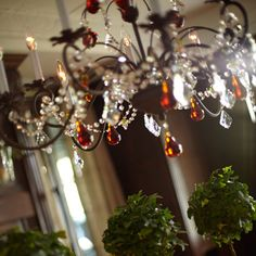 Claudette chandelier chandeliers pantry ideas and townhouse fruit chandelier crystal beads and apples pears grapes aloadofball Choice Image