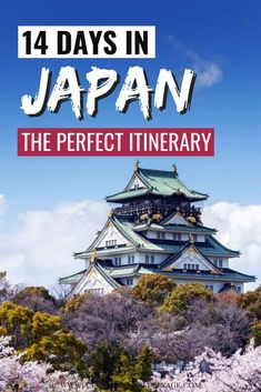 The perfect 14 days Japan itinerary. Everything you need to know to plan your trip to Japan. Where to stay when to go and all the things to do in Japan. This Japan travel guide will help you plan your time - from Tokyo Kyoto to Osaka Nara and Hiroshima. China Travel Guide, Japan Travel Guide, Travel Guides, Japan Guide, In China, Hawaii Travel, Asia Travel, Travel Packing, Travel Uk
