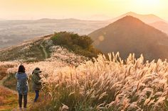 Fall scenery on display at Saebyeol Oreum, Jeju Island, South Korea. | Douglas (DMac) on Flickr