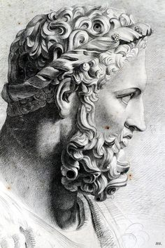 Head of Hercules. drawing from the antique. Artist unknown
