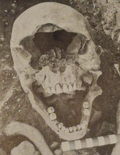 The Nephilim Chronicles: Fallen Angels in the Ohio Valley: California Native Americans: Ancient Giant Human Skeletons Found on San Nicolas I...