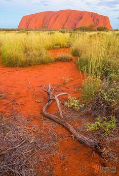 Uluru in Outback Aus