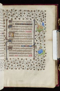 Book of Hours, MS M.919 fol. 43r - Images from Medieval and Renaissance Manuscripts - The Morgan Library & Museum