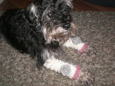 Leg warmers leg protectors dog fashion. by SewTheKnottyOne on Etsy, $15.00