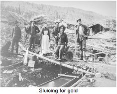 Canada A Country by Consent: British Columbia Joins Confederation: Gold Rush Fever in B. Gold Miners, Fraser River, Great Hobbies, Gold Rush, Historical Pictures, Vancouver Island, History Facts, Wild West, British Columbia