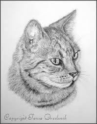 Afbeeldingsresultaat voor dieren om na te tekenen in stappen