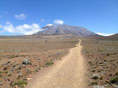Journey Beyond Kilimanjaro, East Africa, Tanzania, Mount Rainier, Climbing, Safari, Journey, Adventure, Mountains