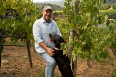 A Geyserville winery's obsession with all things Mercury.