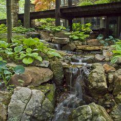 Wandering Waterfall