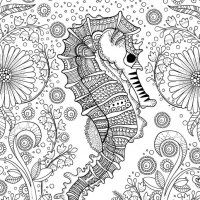 Contented Snail Coloring Page  Zen tangles Anti stress and Snail