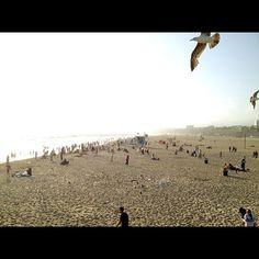 Santa Monica State Beach --Santa Monica, California 2012.05.19