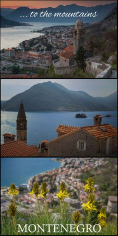 On our first day in Montenegro, we sat on a patio in the main square of the old town of Kotor. We were under the central clock at the main gate where a glimpse of the harbour could be seen just beyond. We sipped on fluffy coffees and watched tourists pour in and out, stopping to take photos of the clock, the square, the gate, anything clickable in the scene around us. Click the photo to read more