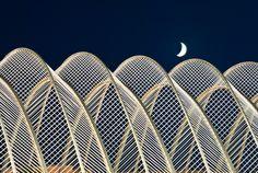 City of Arts and Sciences, Valencia - Spain by Santiago Calatrava, Architect Cubist Architecture, Futuristic Architecture, Interior Architecture, Santiago Calatrava, Principals Of Design, Arch Model, Valencia Spain, Famous Architects, Zaha Hadid