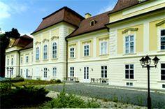 Hőgyész Apponyi kastély Palaces, Czech Republic, Homeland, Hungary, Budapest, Russia, Castle, Explore, Mansions