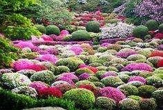 #JAPAN: #Saga/ #Takeo (#Mifuneyama #Rakuen) traveldreamscapes.wordpress.com/2015/04/23/jap… via @wordpressdotcom