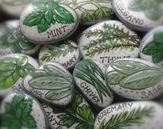 This colorful set of Herb Garden Marker Rocks comes with 9 stones of your choice! The stones are hand painted with acrylic paint and detailed in black and silver permanent marker. Coated with an outdoor varnish, this rock set will remain vibrant in the rays of the sun for seasons to come! Perfect for marking outdoor garden beds & windowsill planters alike! Choose 9 herbs of your choice, either herbs that are shown in the picture above or some that arent! Simply message me with your 9 cho...
