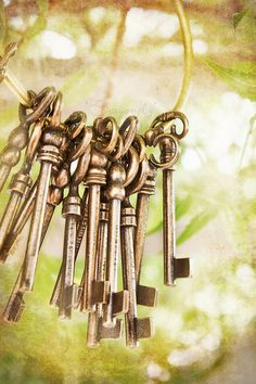 I love keys! Skeleton Keys are all over my house!