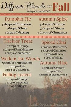 Fall Essential Oil Diffuser Blends will make your home smell amazing. Enjoy many fall essential oil recipes using doTERRA essential oils Best Smelling Essential Oils, Are Essential Oils Safe, Essential Oil Diffuser Blends, Doterra Diffuser, Aromatherapy Diffuser, Aromatherapy Recipes, Diffuser Recipes, Young Living, Diffuser