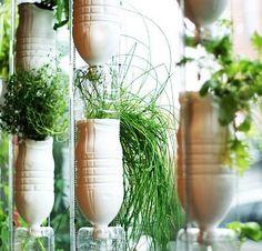 <ESTAÇÃO DAS FLORES> HORTA EM PET   já pensou em plantar hortaliças em garrafas pet?#Pet #Reaproveitando #Hortinha #Plantas #VerdeEmCasa #DicaTecnisa
