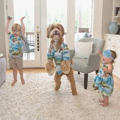 Still in our Aloha wear, raising our hands in the air like we just don't care. 👐🏼We do the happy dance every time we get the chance. Cute Funny Animals, Funny Animal Pictures, Cute Baby Animals, Dog Pictures, Dogs And Kids, Animals For Kids, Animals And Pets, Baby Activity, Cute Kids Pics