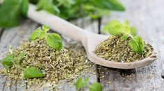 Oregano is very effective against bacteria? When and how is used in treating? The ideal condiment for pizza - oregano - is a plant that provides an incredibly lot of medicinal properties, and is… Natural Herbs, Natural Health, Evergreen Herbs, Metabolism Boosting Foods, Kitchen Herbs, Natural Antibiotics, Healing Herbs, Natural Medicine, Kraut