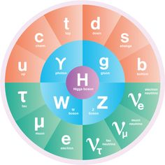 The Standard Model of Particle Physics | symmetry magazine