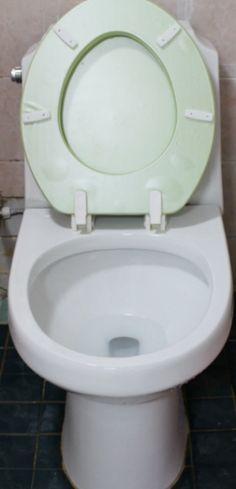 지린내 나는 화장실 변기 간단 청소법