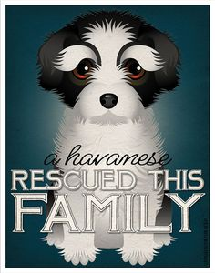 A Havanese Rescued This Family 11x14 Custom by DogsIncorporated, $24.00