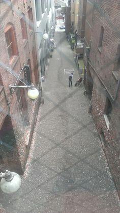 Bird's eye view of Gum Alley Alleyway, Emerald City, Birds Eye View