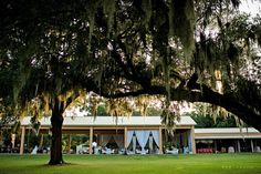 Lakeside Ranch - Weddings and events with rustic elegance and southern hospitality Wedding Reception, Wedding Venues, Southern Hospitality, Rustic Elegance, Mansions, Elegant, House Styles, Plants, Ranch Weddings