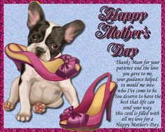 Thank mum for her guidance this Mother's Day with this cute dog card. Free online Thanks For Your Patience, Mum ecards on Mother's Day Mother Day Wishes, Happy Mothers Day, Dog Cards, Name Cards, Big Hugs For You, Warm Hug, Love Hug, Mum Birthday, Mom Day
