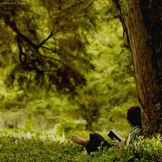 """willowbambi:""""I feel that as long as the Shire lies behind, safe and comfortable, I shall find wandering more bearable: I shall know that somewhere there is a firm foothold, even if my feet cannot stand there again."""" - J.R.R Tolkien - The Fellowship Of The Rings"""