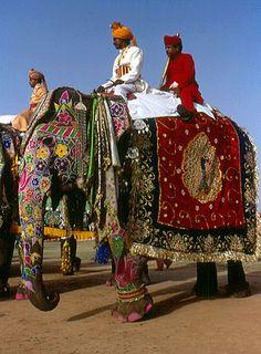 elefante pintado tailandia - Pesquisa Google