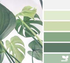 15 Ideas Kitchen Ideas Green Design Seeds For 2019 Nature Color Palette, Green Colour Palette, Green Colors, Colours, Palette Design, Vintage Colour Palette, Mood Colors, Design Seeds, Colour Schemes