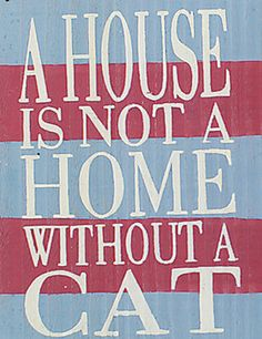 A House Is Not A Home Without A Cat