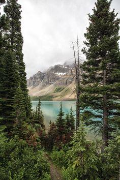 Bow Lake . Alberta Canada