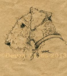Dog-a-day Art Blog: Chester love the airedale art