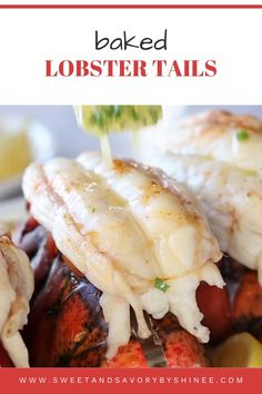 Easy Lobster Tail Recipe, Baked Lobster Tails, Lobster Tail Recipes, Cooking Lobster Tails, Lobster Tail Recipe Steamed, Boil Lobster Tail, Lobster Bake, Fish Recipes, Seafood Recipes